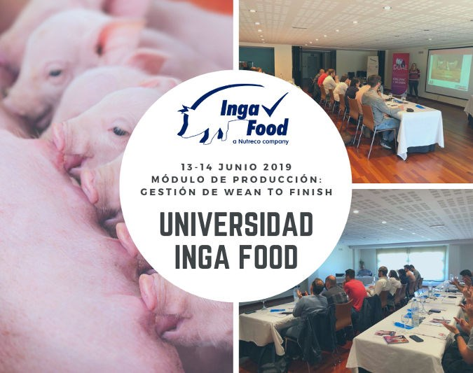 Universidad Inga Food